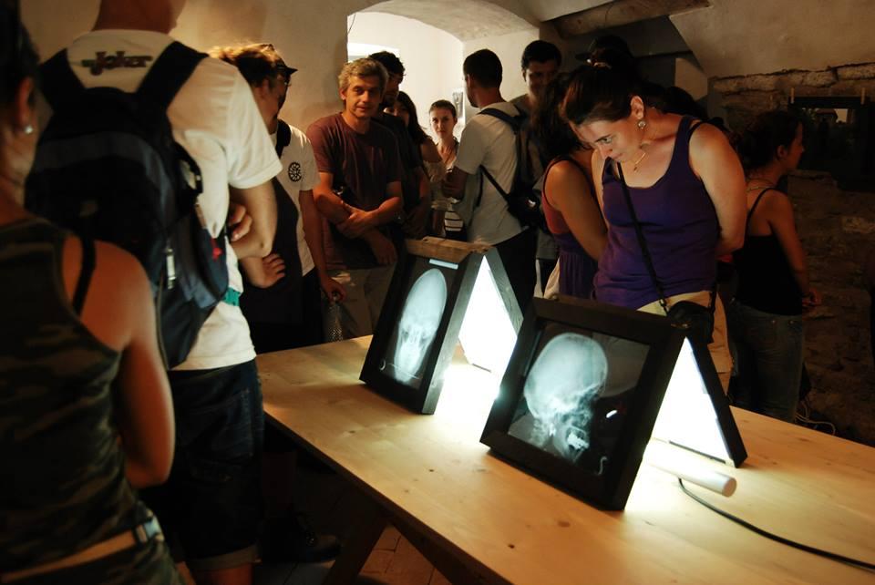 fanfest 2013 expozitie