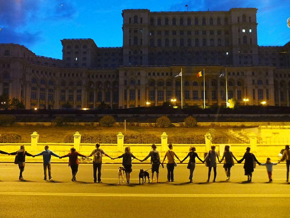 lant viu daniel vrabioiu palatul parlamentului