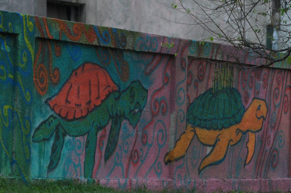 zidul baia mare 1