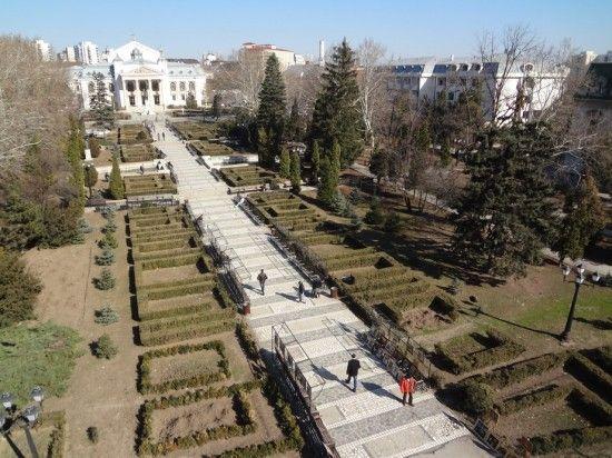 Apără teii lui Eminescu! Trimite petiția contra drujbei Agenţiei pentru Protecţia Mediului Iaşi