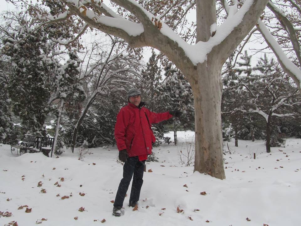 antonesei parc 2