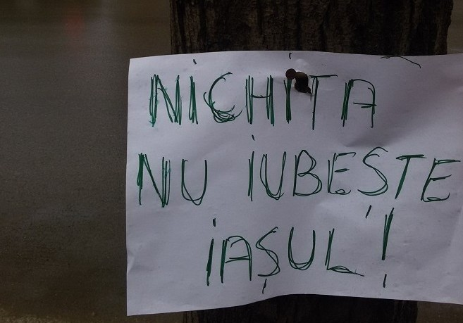 """S-a dat bătută. După un proces cu societatea civilă, Primăria Iași recunoaște: marcările de arbori din Parcul Expoziției  """"nu au fost efectuate conform normelor în vigoare"""""""