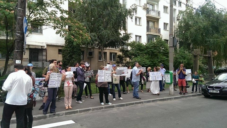 negoita protest 1