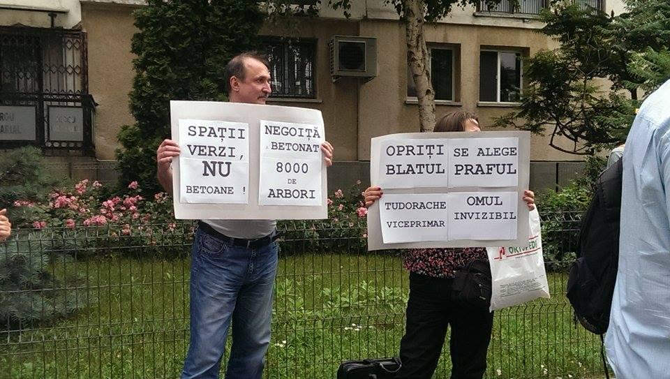 negoita protest 6