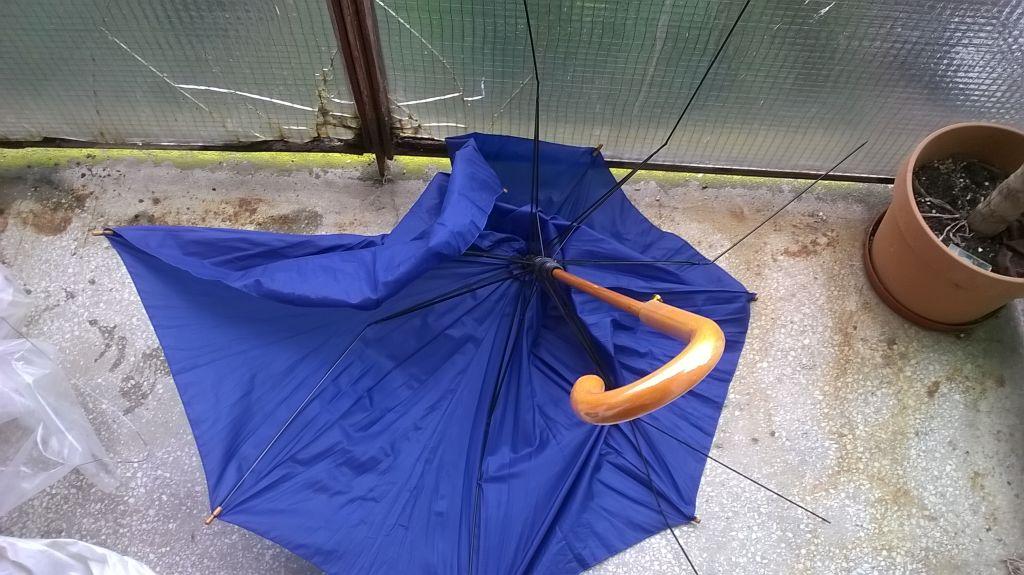 umbrela europeana 1