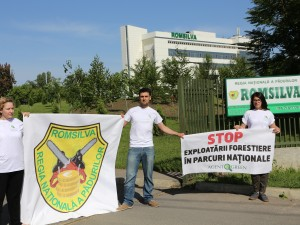 20150522_Romsilva Headquarter - Bucharest: AGENT GREEN activists and mountaineer Alex Gavan protest against illegal logging of forests at Romsilva HQ in Bucharest and call on for a ban of logging in national parks.