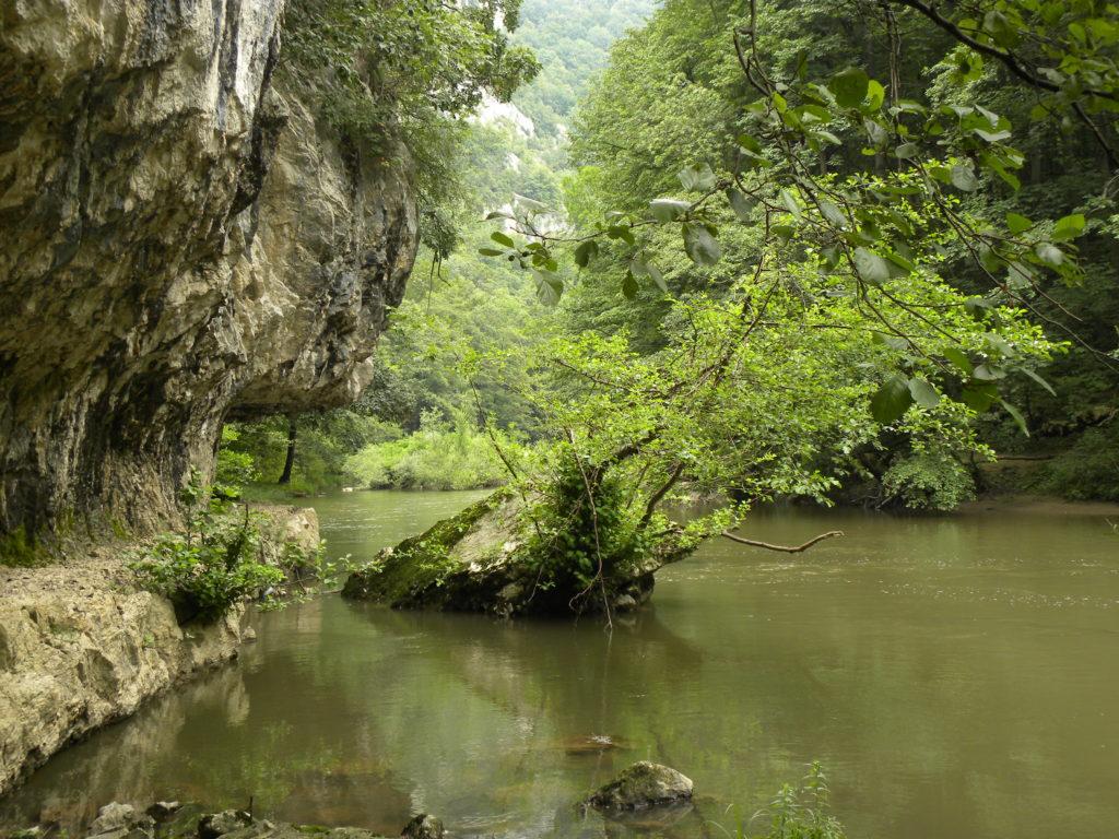 Valea Nerei (foto: Alma Nicolin)