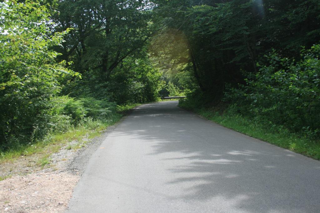 Drumul de pe lângă Crișul Pietros