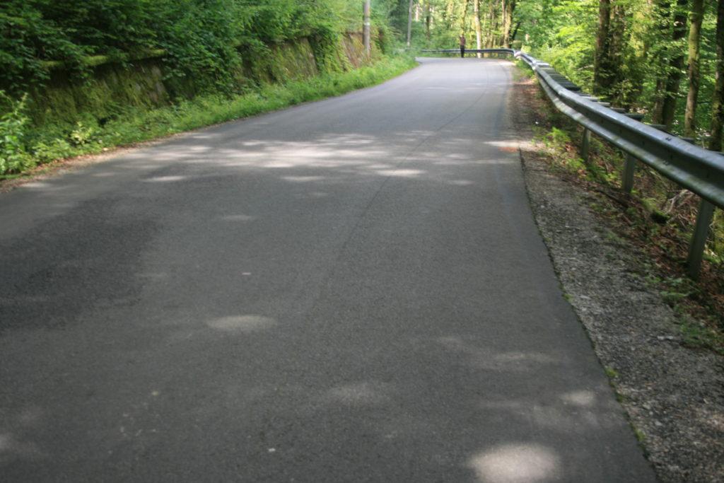 Cum arată drumul de pe lângă Crișul Pietros 1