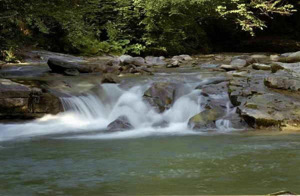 """DEZVĂLUIRI. Cum se betonează principalul râu din Parcul Natural Apuseni și cum se protejează """"calitatea apei mării"""" la munte"""