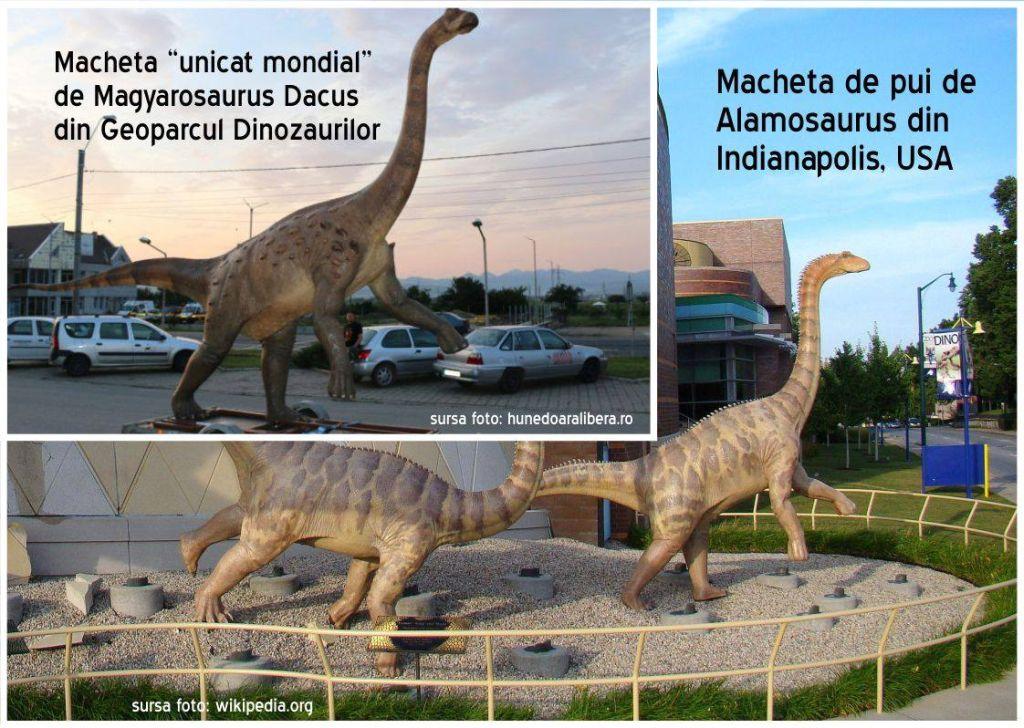 parcul dinozaurilor pseudo unicat