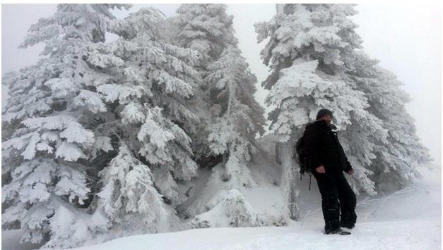 Ce activități se pot face, pe perioada iernii, în ariile protejate. România Curată vă prezintă 5 destinații