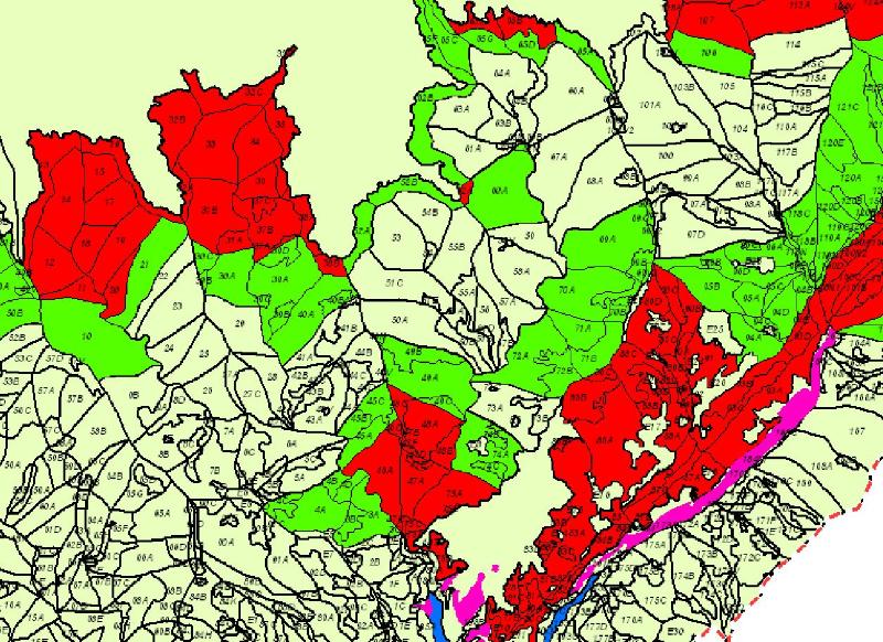 Exclusiv Cum Trimite Romsilva La Tăiere Păduri Virgine Vizibile