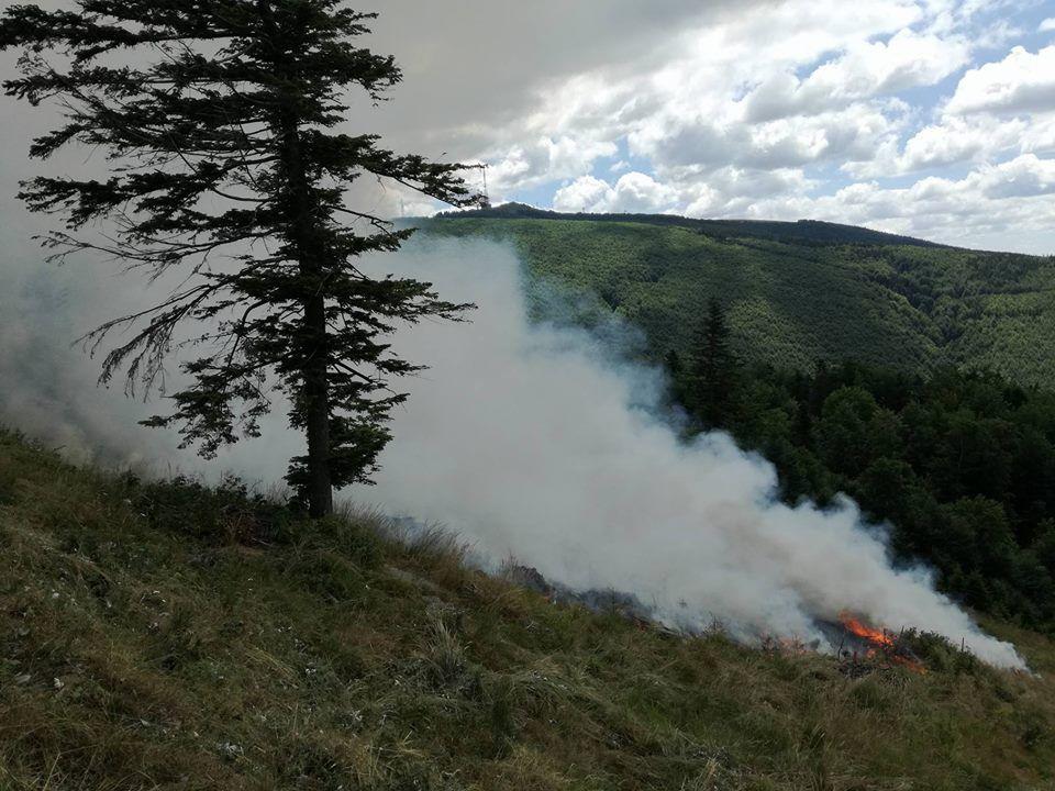 Anchetă după tăierile și incendiile din Parcul Național Semenic
