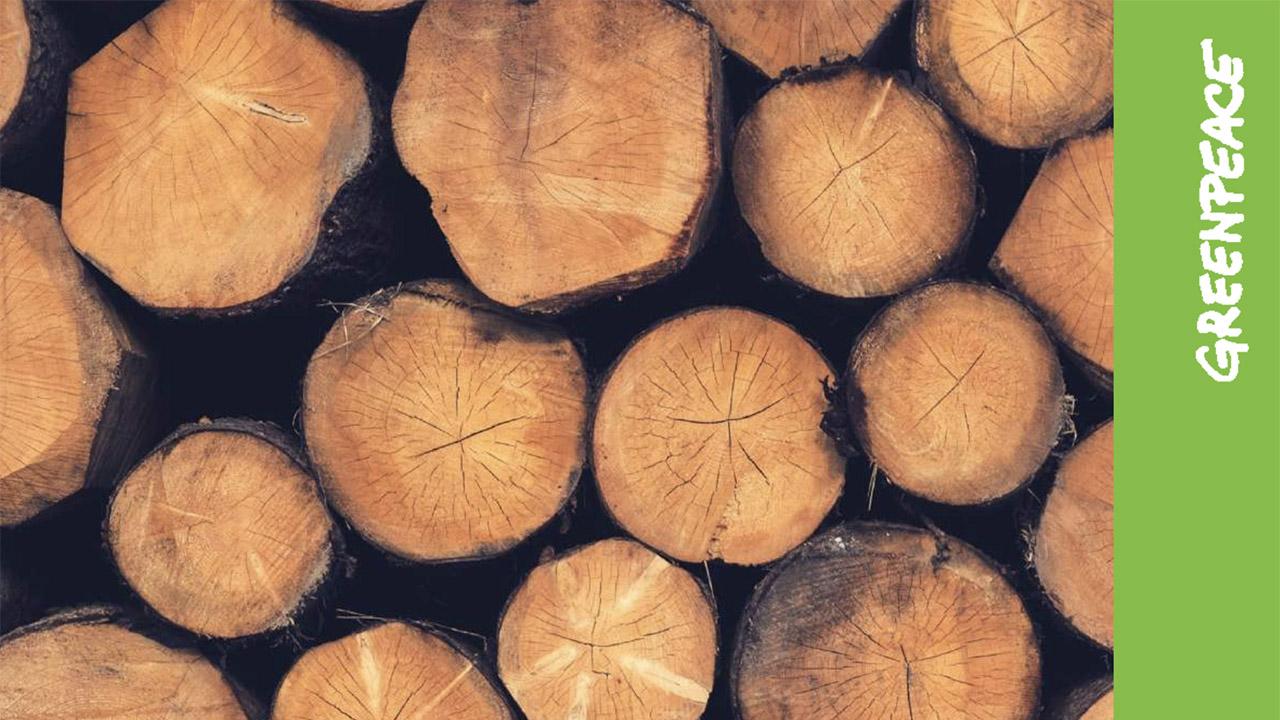Harta tăierilor ilegale din păduri pentru anul 2017: Mureș, Brașov și Olt sunt cele mai afectate județe