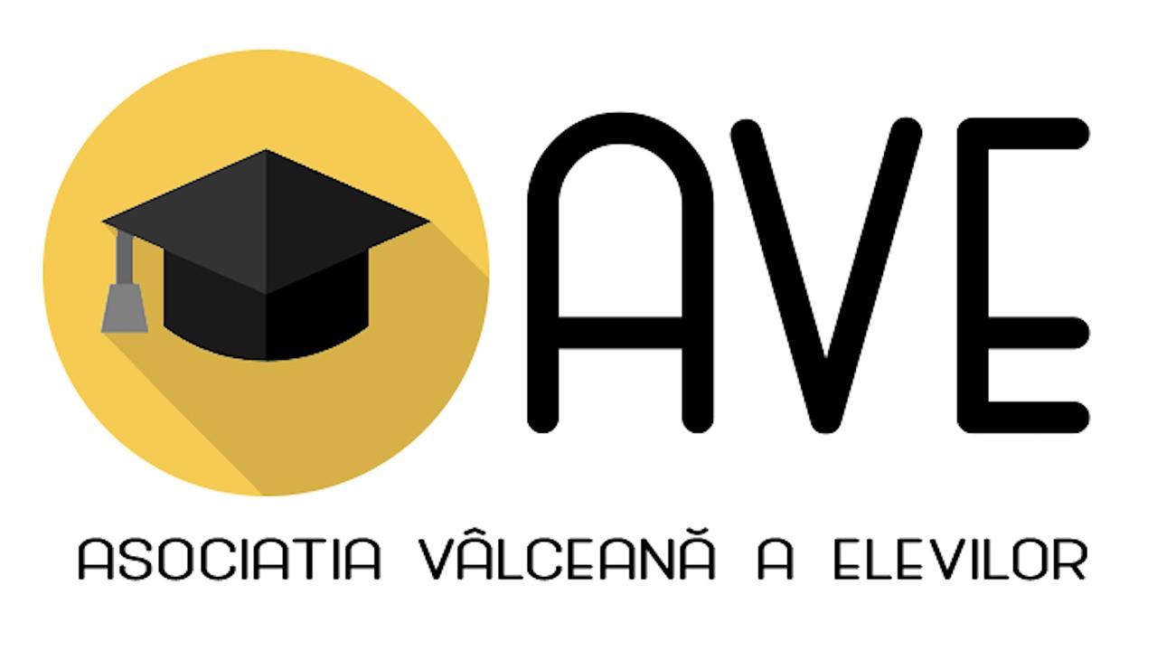 Asociația Vâlceană a Elevilor s-a lansat la apă cu 3 demersuri pentru elevii din județ