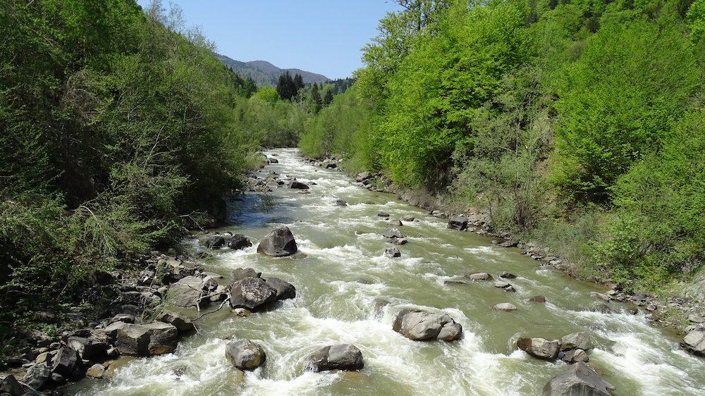 Ei nu văd și nu au văzut râul, ei văd doar banii