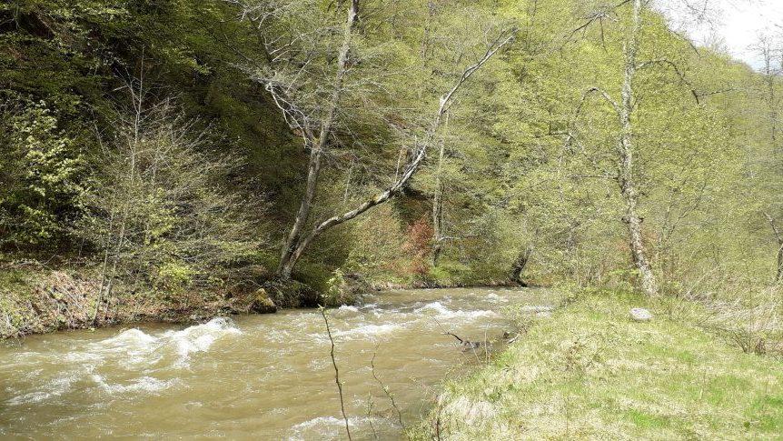 Viorica Dăncilă în Valea Jiului, pe urmele lui Rok Rozman