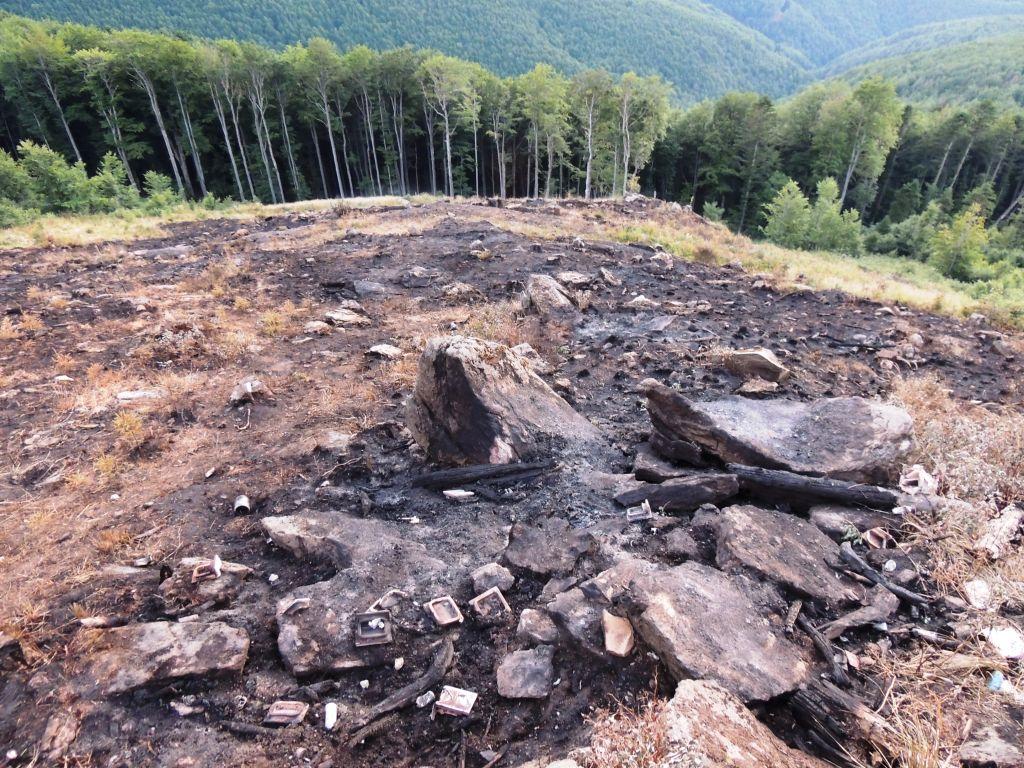 Agent Green solicită înlăturarea Romsilva de la administrarea Parcului Național Semenic