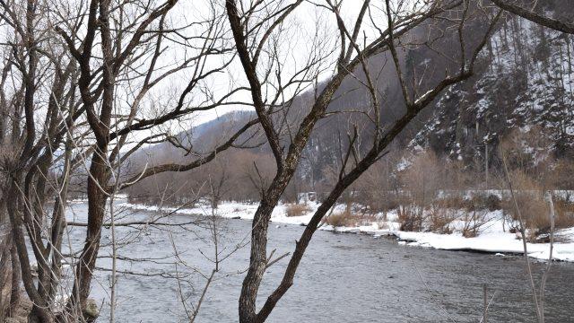 Lostrița, regina apelor de munte, în pericol