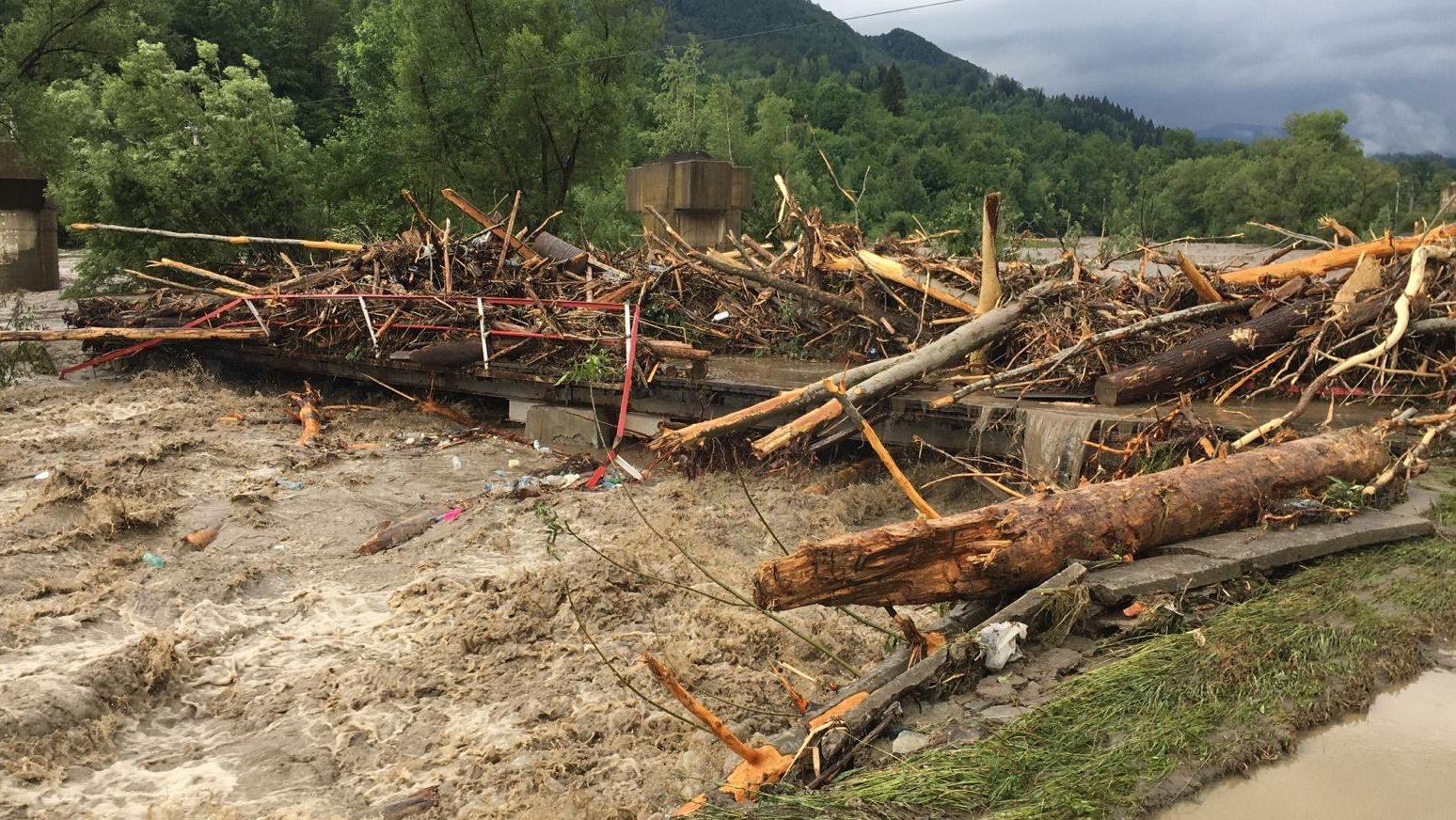 Taierile masive din munții Vâlcan, cauza inundațiilor din Uricani