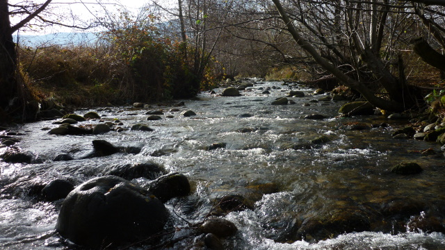 O decizie halucinantă a Tribunalului Hunedoara pune din nou în pericol Râul Alb