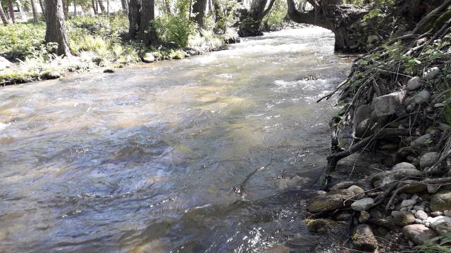 O nouă victorie pentru Râul Alb, la Tribunalul Hunedoara