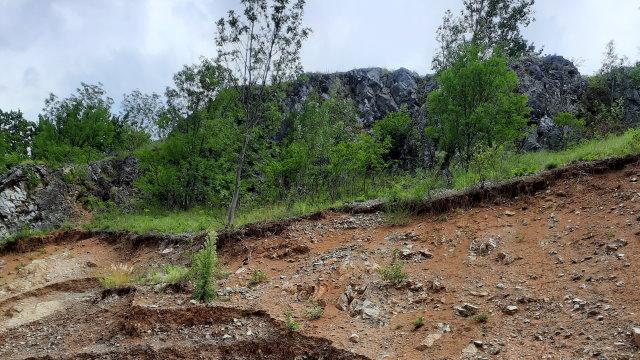 Valea Bistriței Gorjene, valea banditismului de mediu